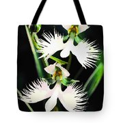 Egret Orchids Tote Bag by Shere Crossman