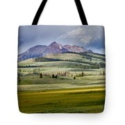 Electric Peak Tote Bag by Bill Gallagher