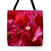Electric Pink Bougainvillea Tote Bag by Rona Black