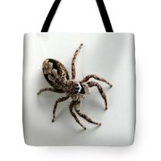 Elegant Jumping Spider Tote Bag by Christina Rollo