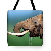 Elephant drinking water Tote Bag by Johan Swanepoel