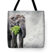 Elephant With A Snack Tote Bag by Tom Gari Gallery-Three-Photography