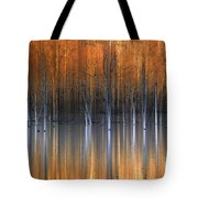 Emerging Beauties Reflected Tote Bag by Marco Crupi