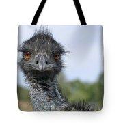 Emu Gaze Tote Bag by Belinda Greb