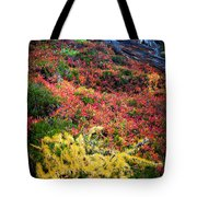 Enchanted Colors Tote Bag by Inge Johnsson