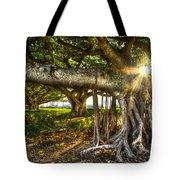 Enchantment Tote Bag by Debra and Dave Vanderlaan