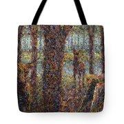 Encounter Tote Bag by James W Johnson