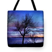 End Of Day Tote Bag by Betty LaRue