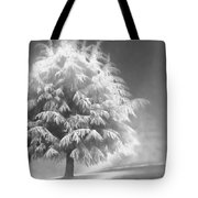 Enlightened Tree Tote Bag by Don Schwartz