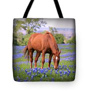 Equine Bluebonnets Tote Bag by Stephen Stookey