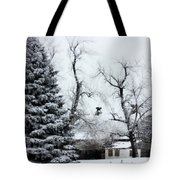 Estherville Barn Tote Bag by Julie Hamilton