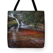 Ethereal Autumn Tote Bag by Bill  Wakeley