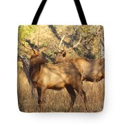 Evening Sets On The Elk Tote Bag by Robert Frederick