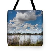 Everglades Lake 6853 Tote Bag by Rudy Umans