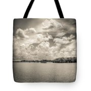 Everglades Lake 6919 Bw Tote Bag by Rudy Umans