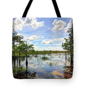 Everglades Landscape 8 Tote Bag by Rudy Umans
