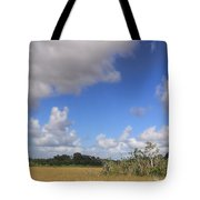 Everglades Landscape Panorama Tote Bag by Rudy Umans