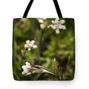 Everlasting Tote Bag by Christina Rollo