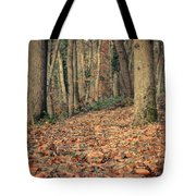 Expectation Tote Bag by Taylan Soyturk