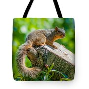 Exploring Tote Bag by Optical Playground By MP Ray