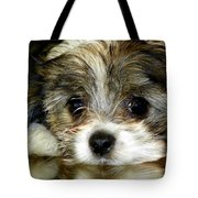 Eyes On You Tote Bag by Karen Wiles