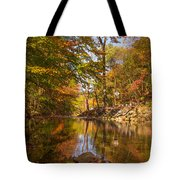 Fall At Valley Creek  Tote Bag by Rima Biswas