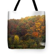 Fall At Valley Forge Tote Bag by Skip Willits