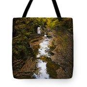 Fall colors Tote Bag by Eduard Moldoveanu