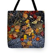 Fall Leaves On Pavement Tote Bag by Elena Elisseeva