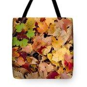 Fall Maples Tote Bag by Steven Ralser