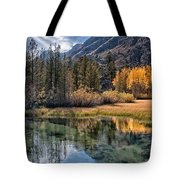 Fall Reflections Tote Bag by Cat Connor