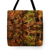 Fall Reflections Tote Bag by Karol Livote