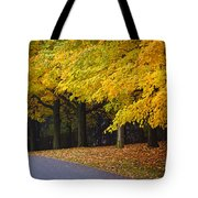 Fall Road And Trees Tote Bag by Elena Elisseeva