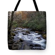 Fall Seclusion Tote Bag by Skip Willits