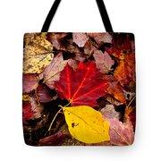Fallen Tote Bag by Karol Livote