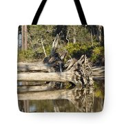 Fallen Trees Reflected In A Beach Tidal Pool Tote Bag by Bruce Gourley