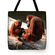 Family Time Tote Bag by Trever Miller
