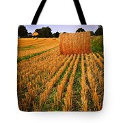 Farm Field With Hay Bales At Sunset In Ontario Tote Bag by Elena Elisseeva