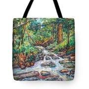 Fast Water Wildwood Park Tote Bag by Kendall Kessler