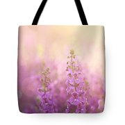 First Light Tote Bag by Amy Tyler