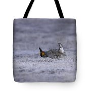 First Light Tote Bag by Thomas Young