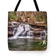 Fishing Mill Creek Falls In West Virginia Tote Bag by Dan Friend