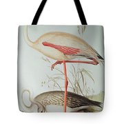 Flamingo Tote Bag by Edward Lear
