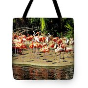 Flamingo Family Reunion Tote Bag by KAREN WILES