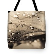 Floral Close-up IIi Tote Bag by Marco Oliveira