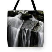 Fluke fall Tote Bag by Gary Eason