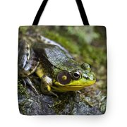 Fly Catcher Tote Bag by Christina Rollo