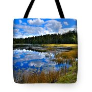 Fly Pond In The Adirondacks II Tote Bag by David Patterson