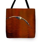Flying Gull On Fall Color Tote Bag by Robert Frederick