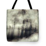 Foggy Landscape Stephens Passage Tote Bag by Ron Sanford